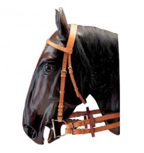 Exercise bridle w/plain and laced reins