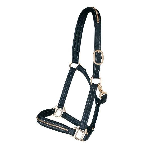 Clincher leather halter